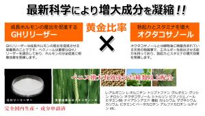 screenshot-bechnoll.net 2015-02-13 14-47-20