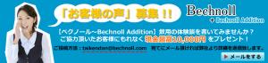 screenshot-bechnoll.net 2015-02-13 15-18-30