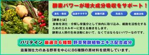 screenshot-varitain.com 2015-02-15 17-37-44
